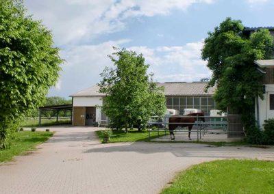 Pferdepension Virthahof
